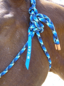 NAME TAG - Rope Halter Name Tag