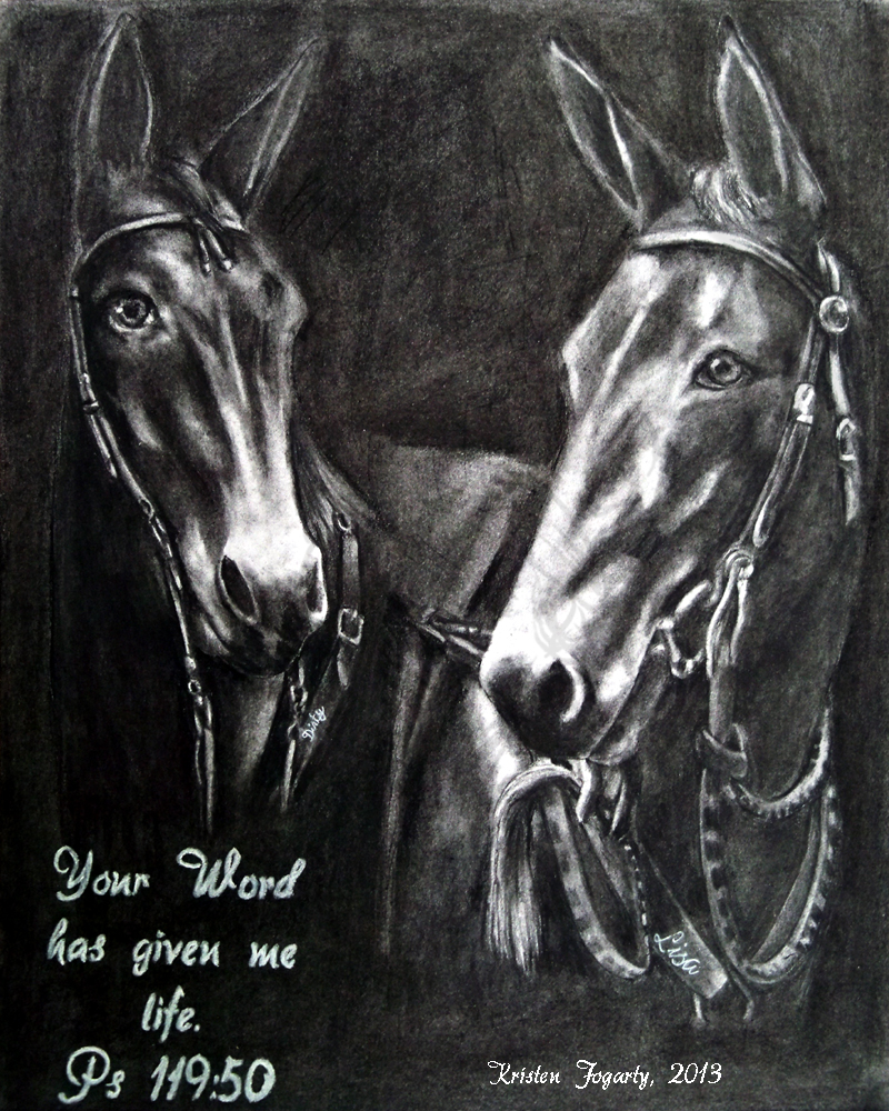 KF  11 x 14 - Multiple Equine Portrait by Kris