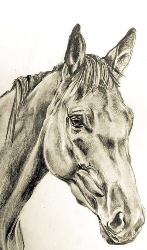 KF CHCL - Your Horse in Charcoal 8x10