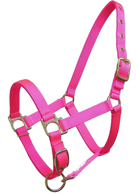 RM CSTM MINI - Build Your MINI Halter!