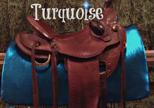 SS TURQ - Turquoise Show Skinz