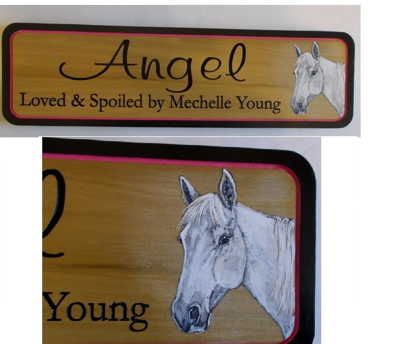 AG 18 PNTD - 18 Stall Sign Hand-Painted w/YOUR Horse